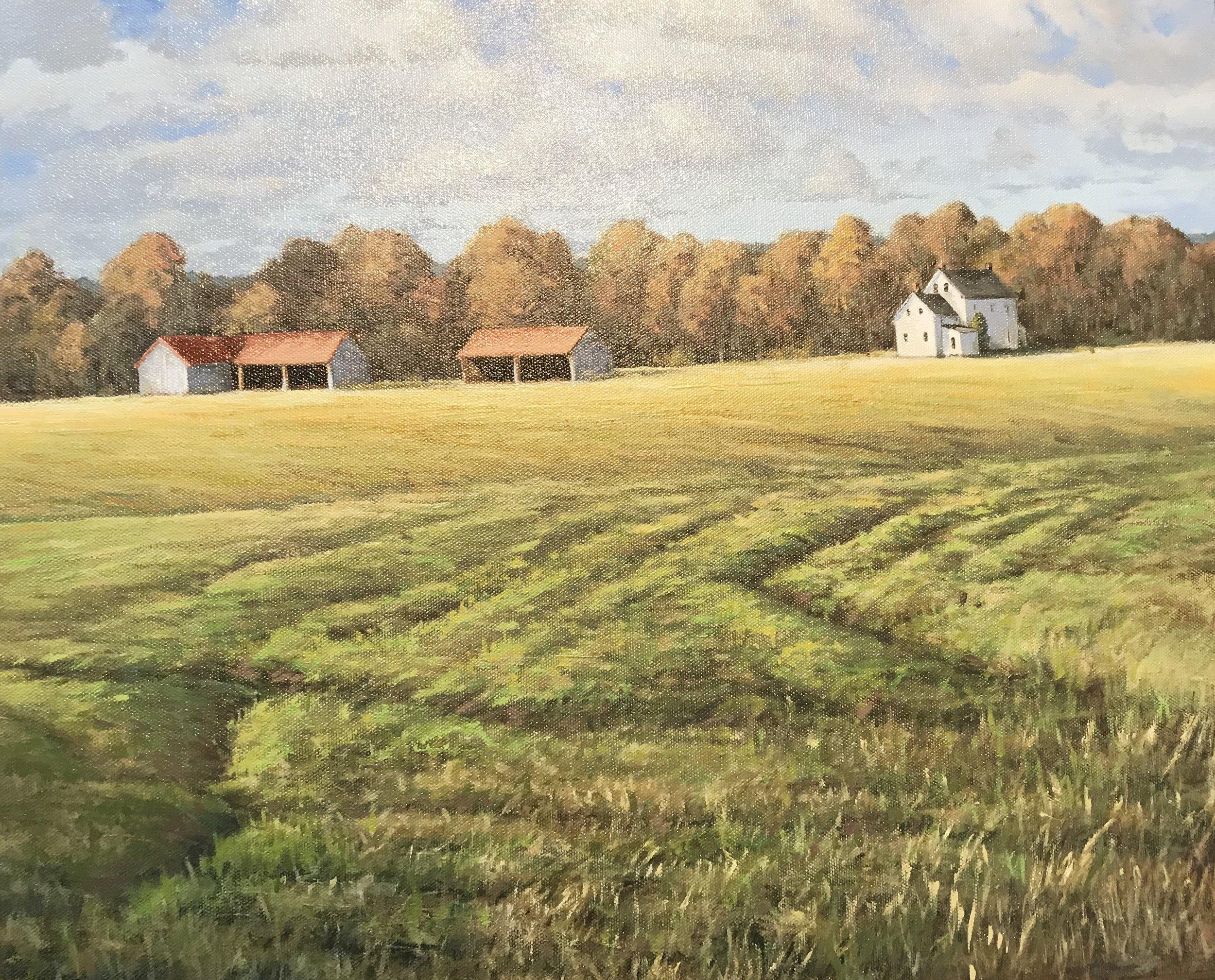 Spring Across the Field oil on canvas16x20.jpg