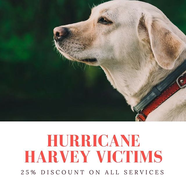 All pawparents having to evacuate their homes because of Hurricane Harvey will receive a 25% discount at Pawliday Inn.  #PrayForTexas #SaveHouston #HurricaneHarvey #HoustonStrong #hopeforhouston