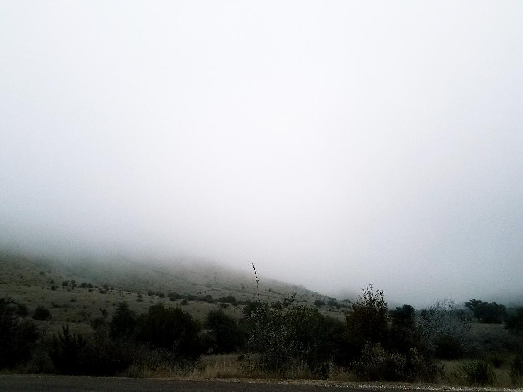 the fog.jpg