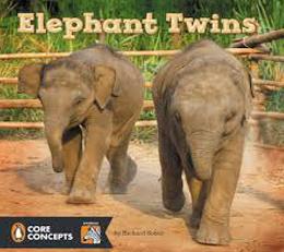 Elephant-Twins.jpg