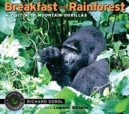 Breakfast-in-the-Rainforest.jpg