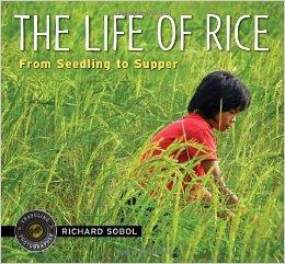 Sobol.The-Life-of-Rice.jpg