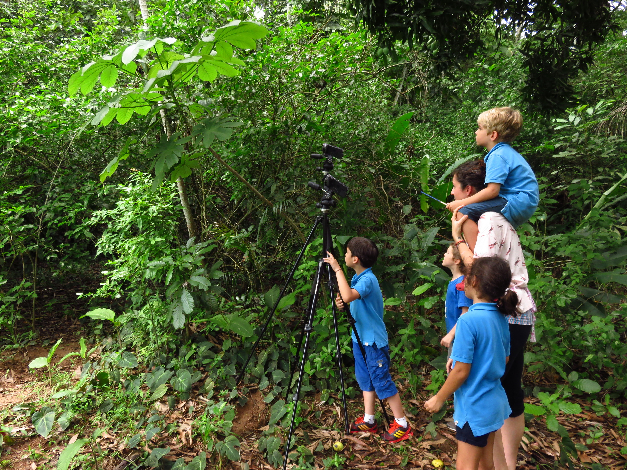 Gamboa Discovery School joins the field excursion to document differences in colony aggression