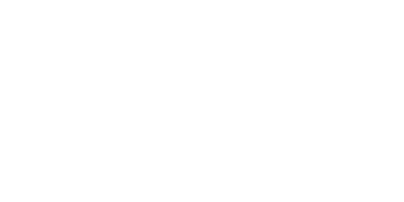 in n out logo white.png