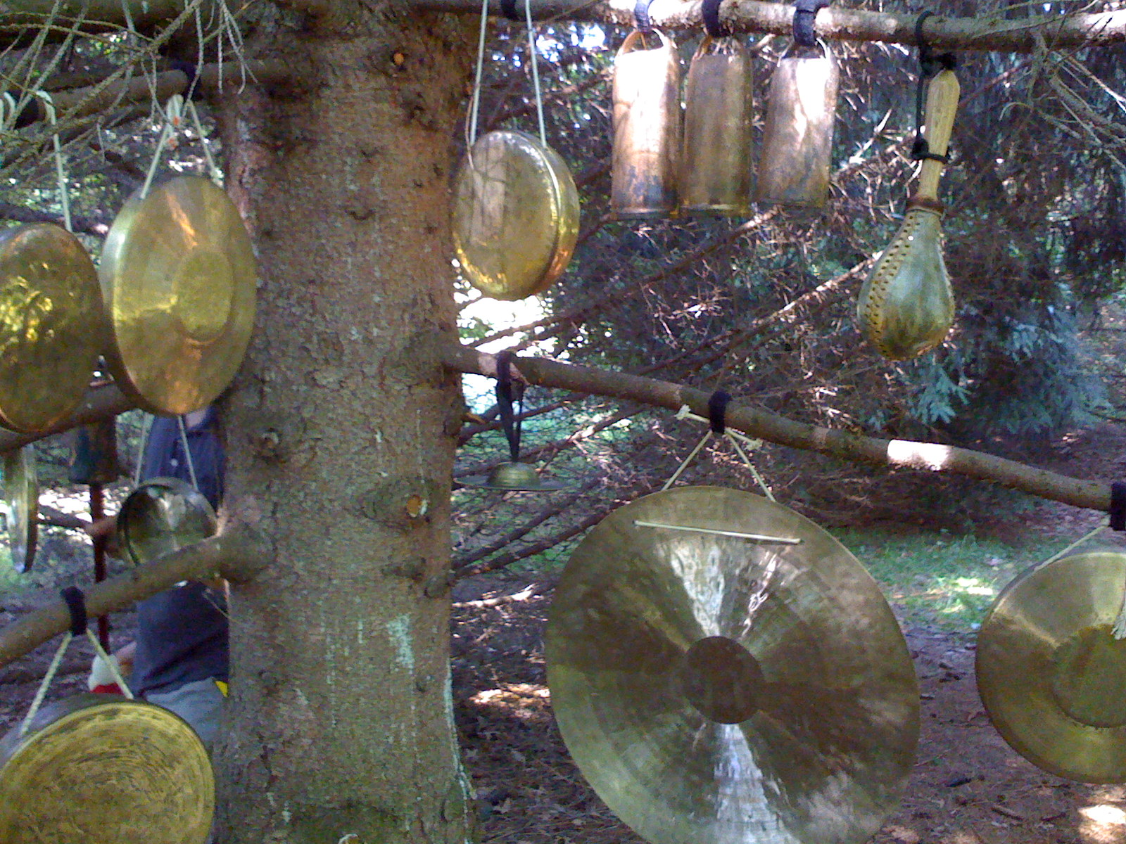 Gong trees (II) for Grain of Sand film shoot, Ravenna, OH