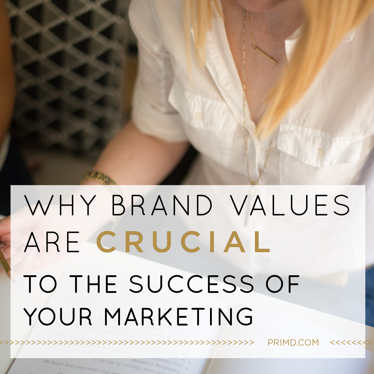 Prim'd Marketing - Why Brand values Are Crucial To The Success Of Your Marketing