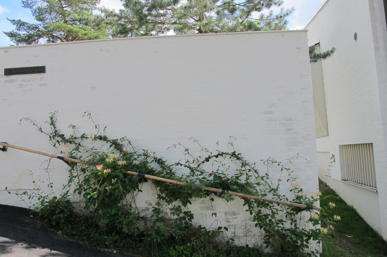 Entry rail covered in flowers / Studio Aalto / 11 July 2015
