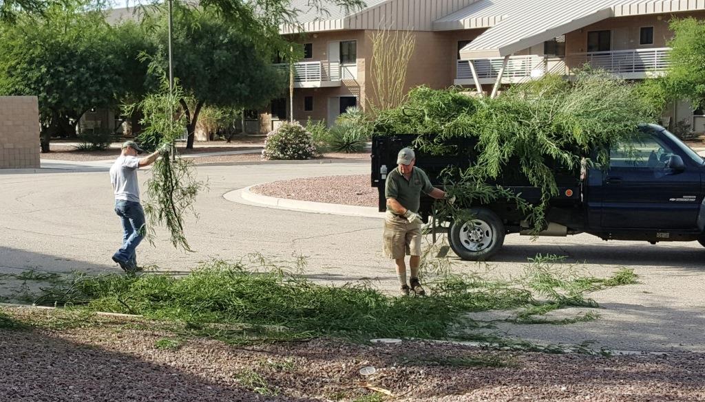 Cleanup at Davis-Monthan1.jpg