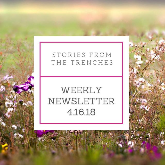 Weekly newsletter is up! Catch up on the latest stories, upcoming Facebook live and opportunities. Click on our bio to read now. #monday #mondaymorning #stories #storiestrenches