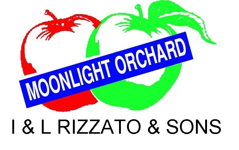3. Rizzato moonlight logo 2007 VERSION 2.jpg