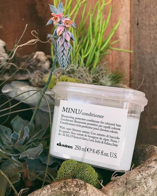 MINU ✨ leaves colored hair hydrated, protected, and more manageable with active ingredients like caper blossom extract 🌿🌸 #davinesnorthamerica #space07salon