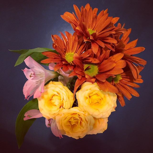 Flowers to welcome fall. Finally feeling ready for the sweater season. #inspiration #fallcolors #floweroftheday