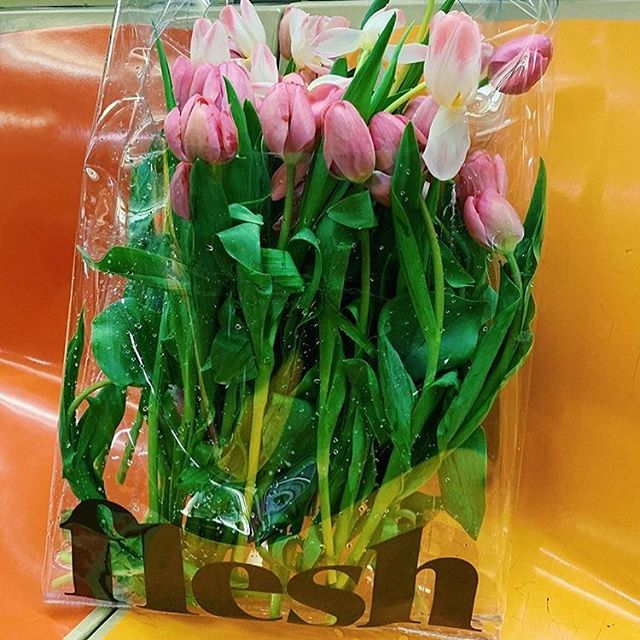 : #clearbag  #subway ride toting #tulips made possible by a #fleshbeauty #clear #tote via @thepouf