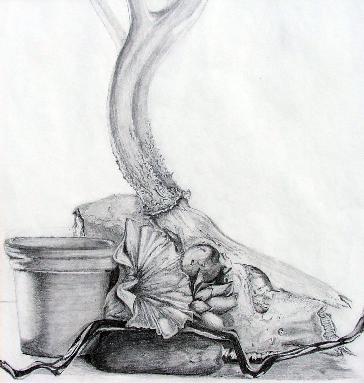 untitled (still life), graphite, 2002
