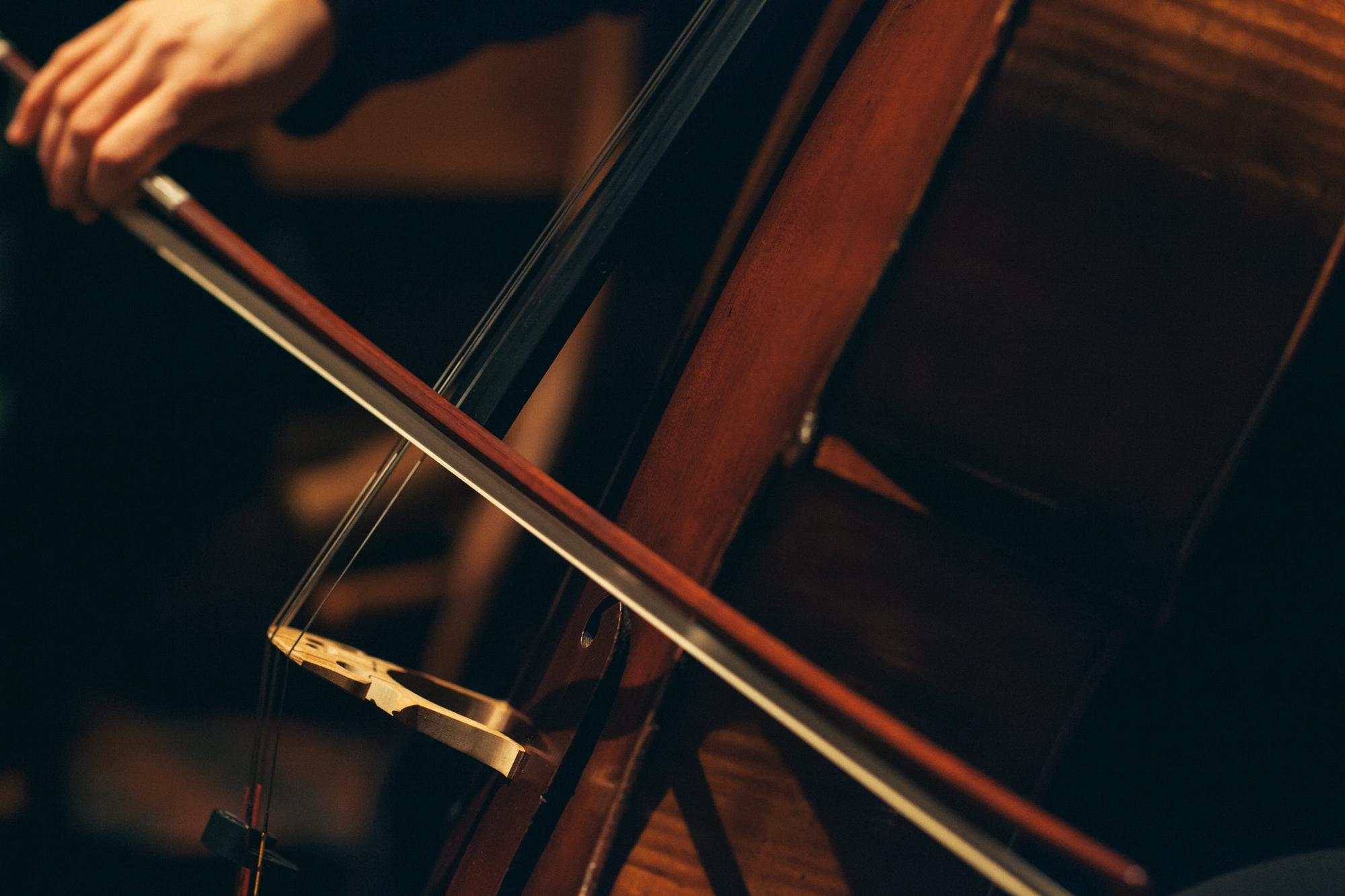 AVIVA Strings:  Elegant Live  Strings  For Weddings, Events, &  Special Occasions. Serving  Northeastern Pennsylvania,Wilkes-Barre, Scranton, the Poconos, the Lehigh Valley, Philadelphiaand beyond!