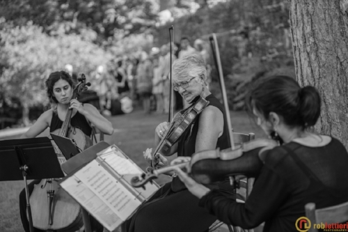 AVIVA Strings performing pop quartets and trios at a wedding in the Lehigh Valley!  Image courtesy of  Rob Lettieri Photography