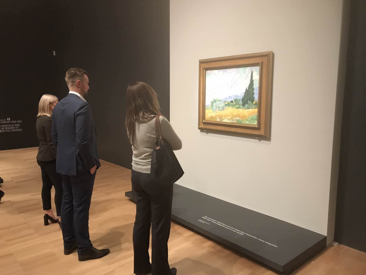 - Admiring the Art of Van Gogh