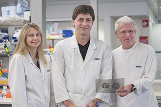 Dr. Andreas Strasser, WeHi Melbourne