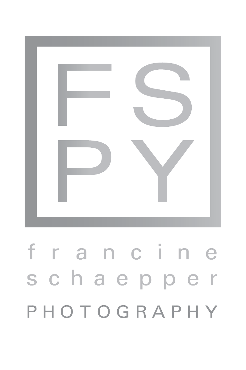 FSPY Logo low res PNG.png