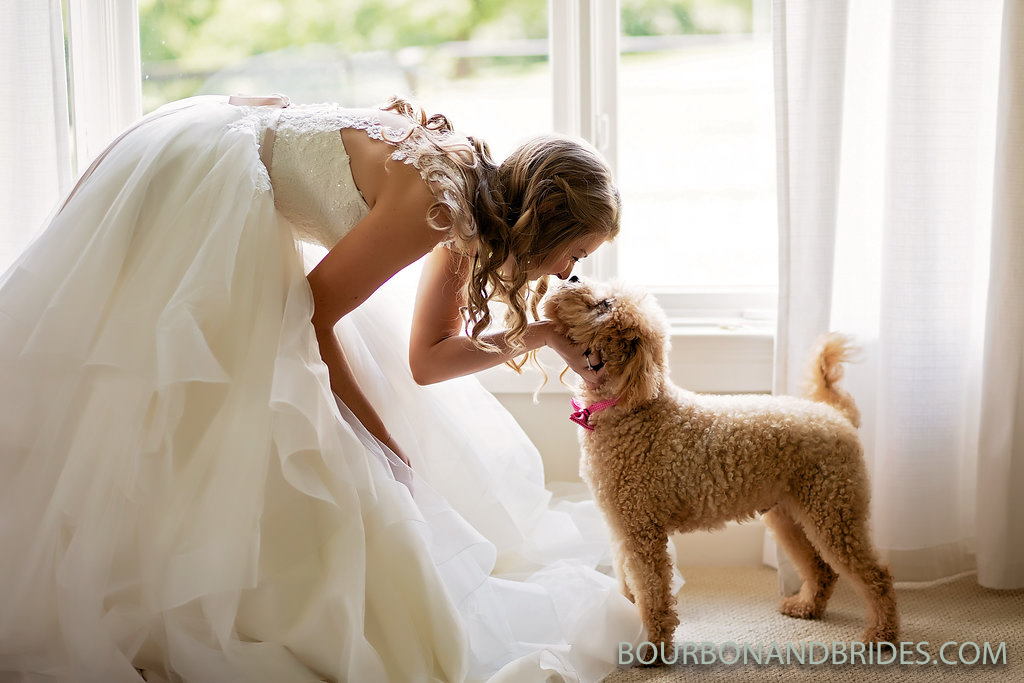 bride-dog-kentucky-wedding.jpg