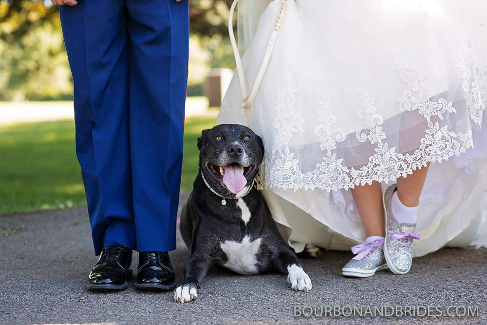 dog-bride-groom-kentucky-wedding.jpg