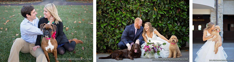 Keeneland-dog-wedding-photographer.jpg