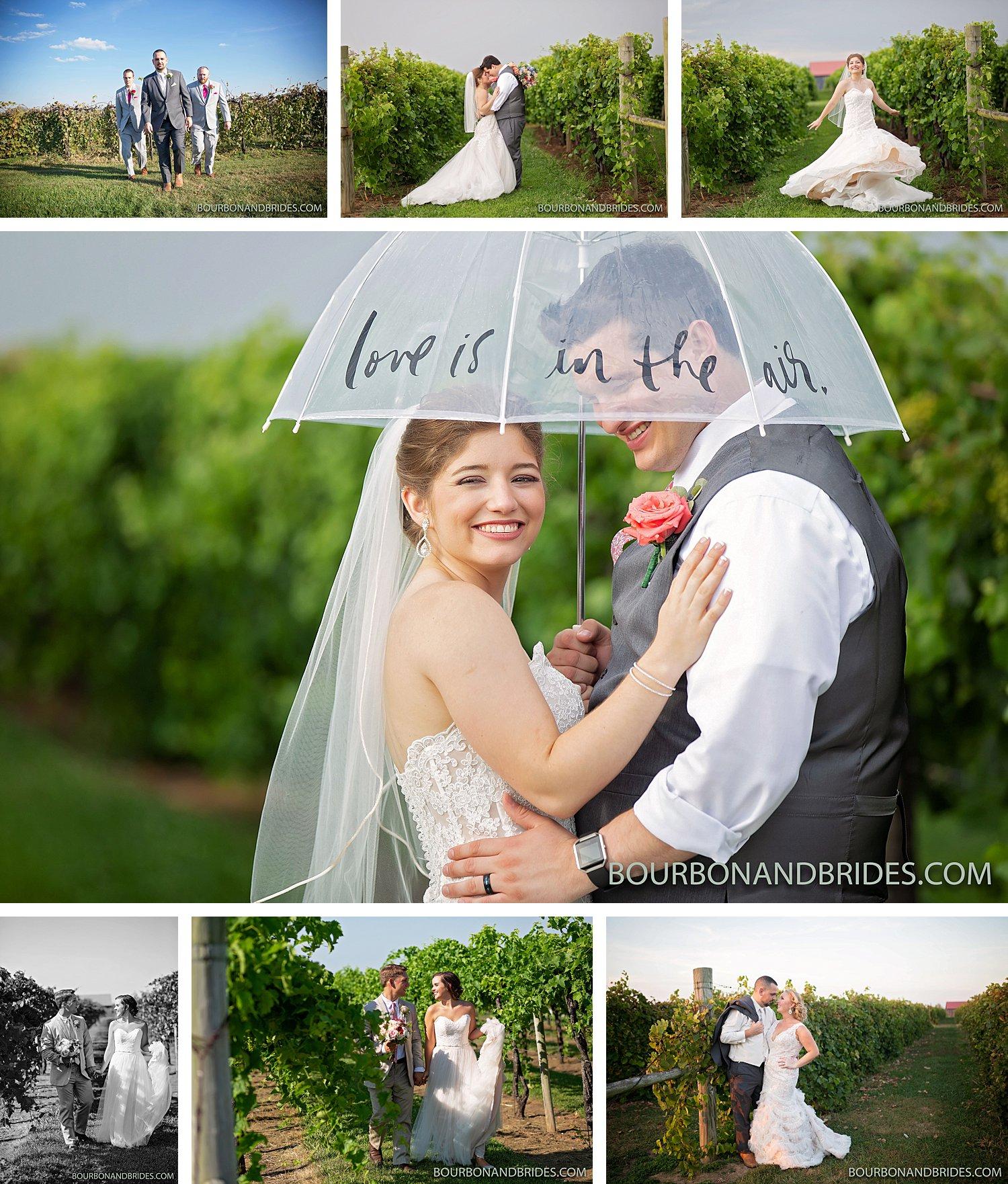 talon-winery-lexington-wedding-photographer.jpeg