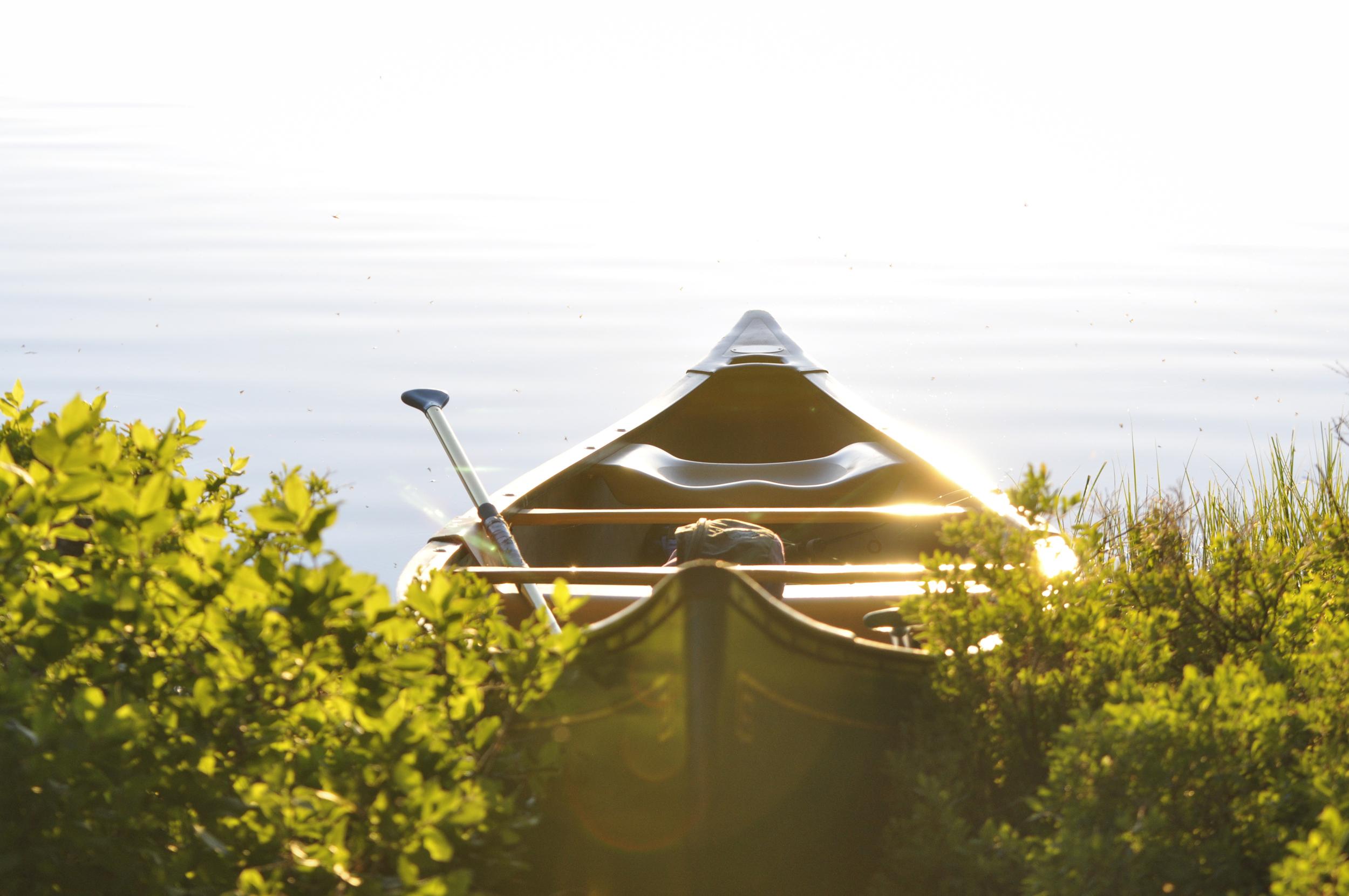 sunkissedboat.jpg