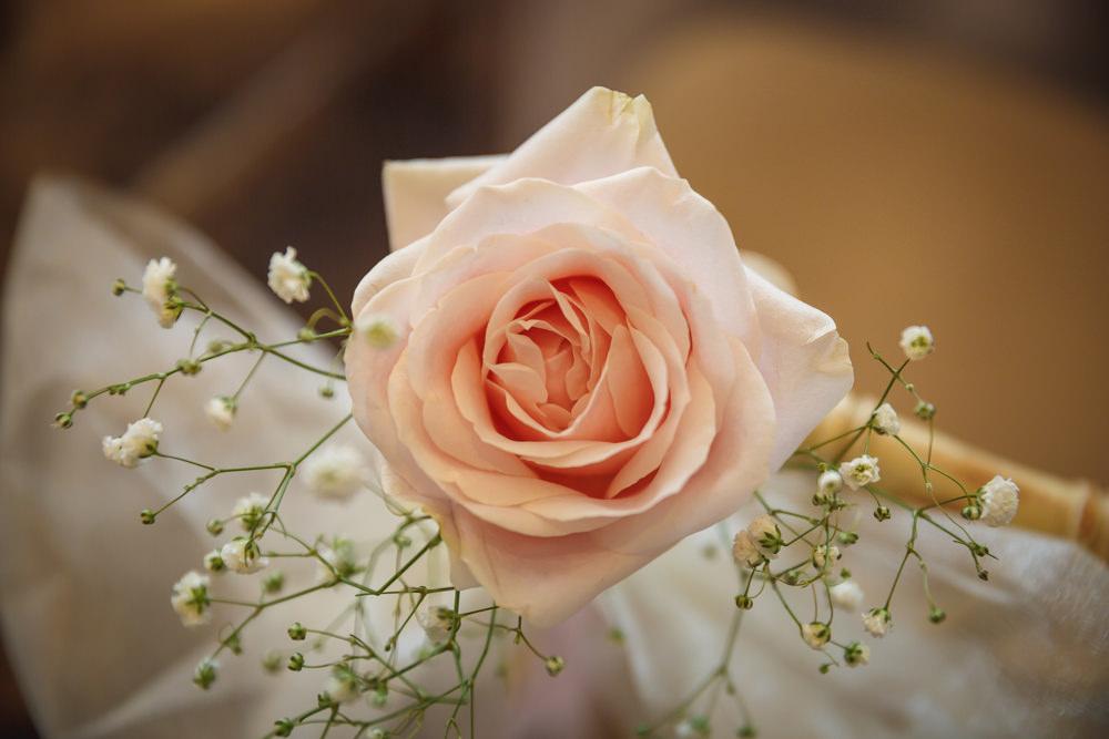 9. Flowers (c).JPG