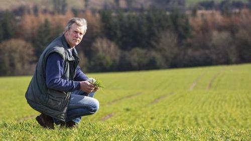 Agri Sector Solar