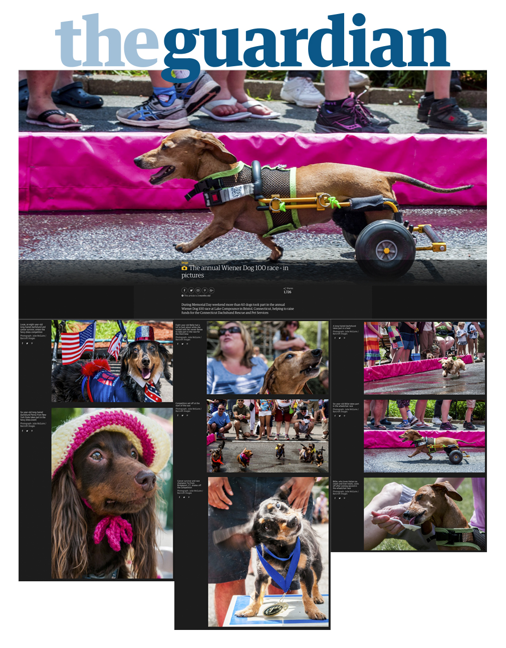 Wiener 100 Races