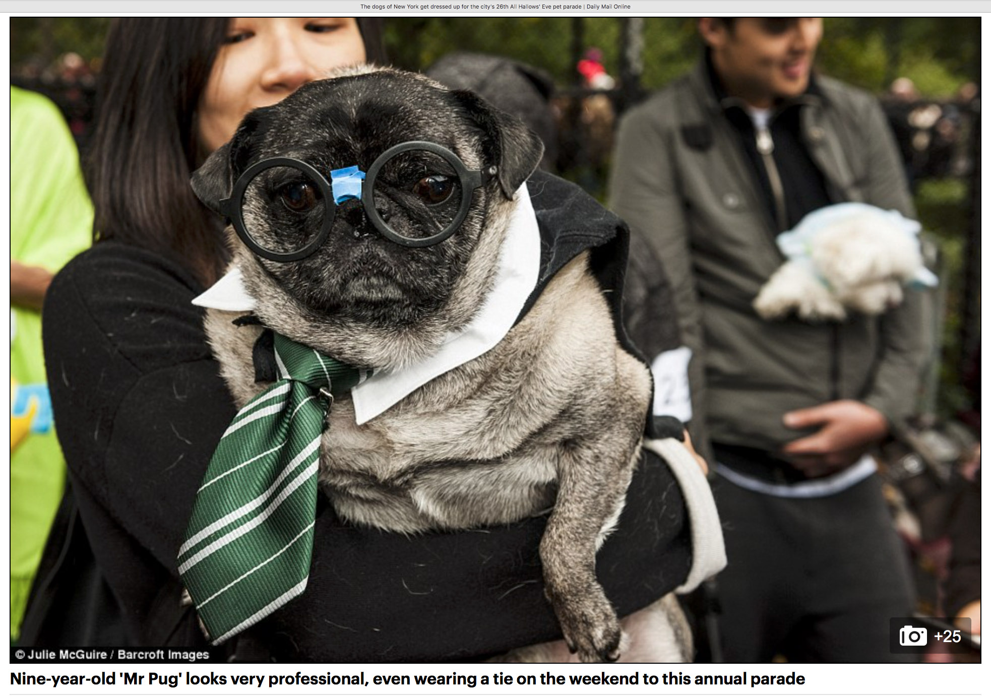 Harry PUGGER!
