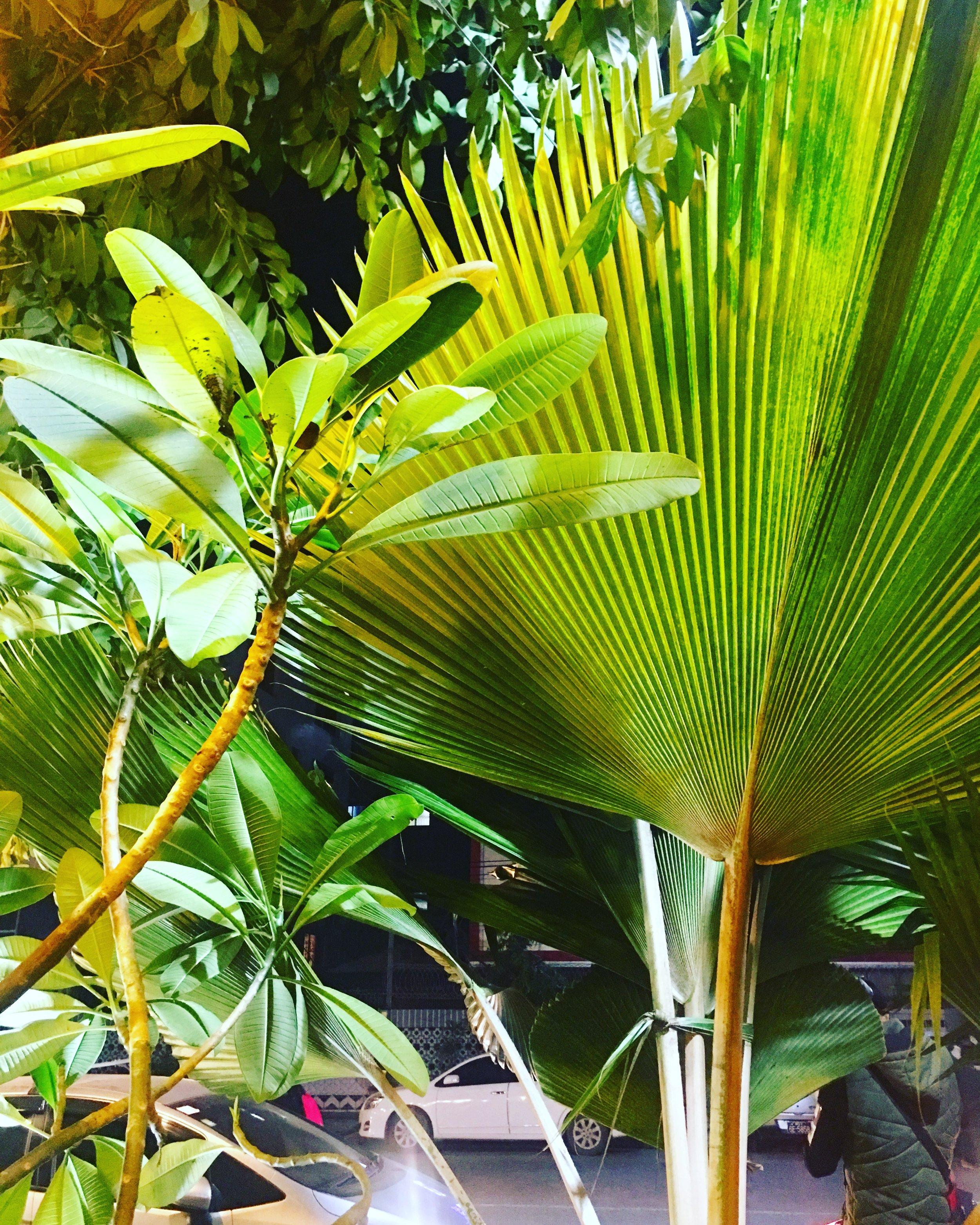 green, mandalay