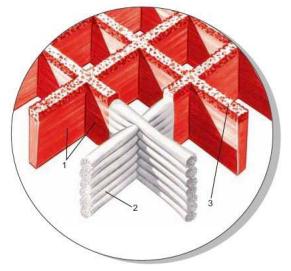 BWMP-Kentec复合材料FRP尺寸.PNG
