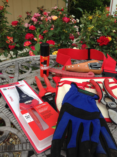 A rose pruner's toolkit