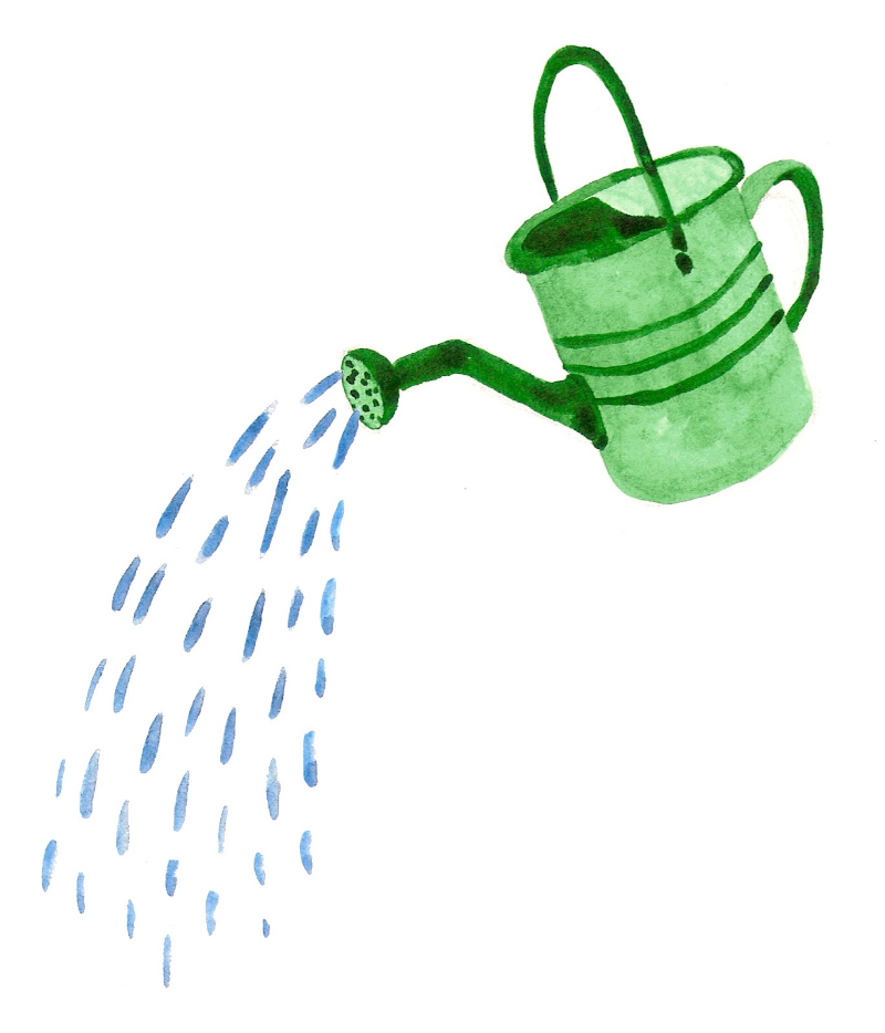 watering-can-with-water-890848.jpg