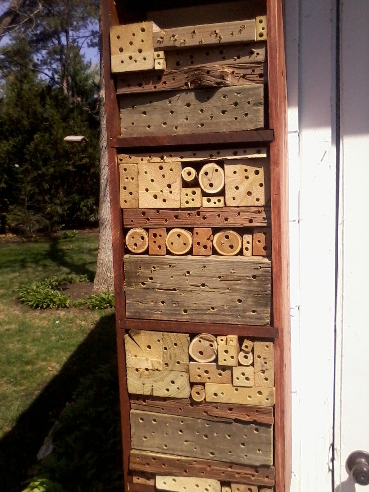 Bee Block 6.jpg