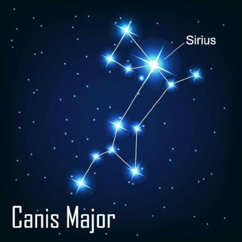 Paw & Order Sirius Membership is truly.... SERIOUS!