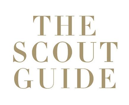 scoutguide.jpg