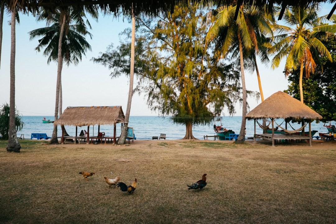 cambodia 5.jpg