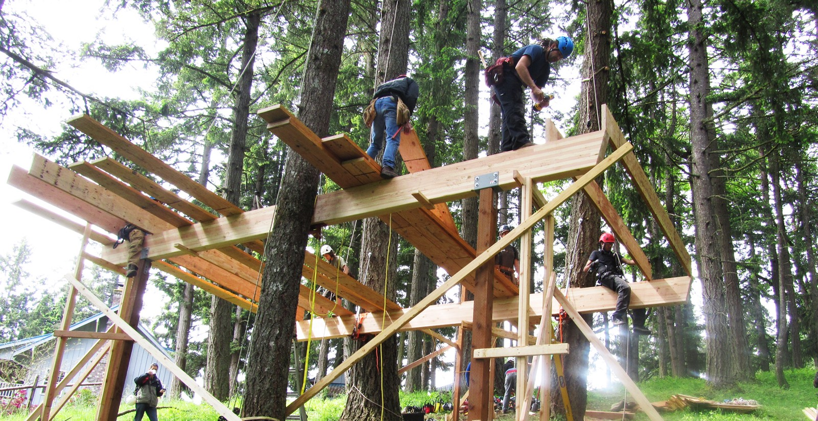 Want to help build a treehouse?  A project on TravelStarter is offering just that.