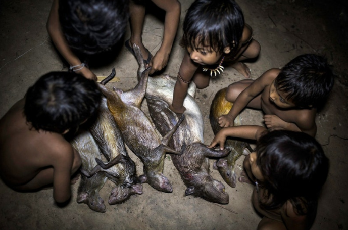 Young Awá children check the freshly caught animals. For the future hunter, this is part of the learning process.