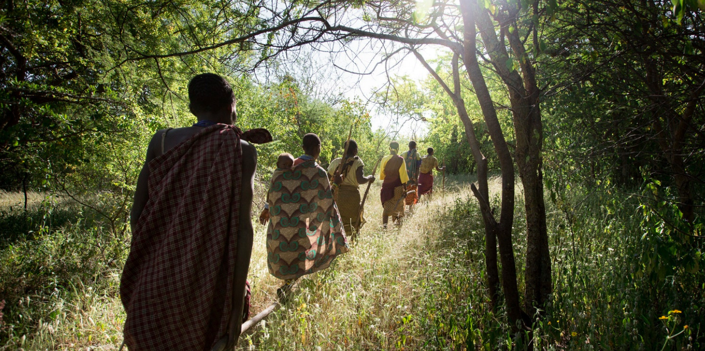 Above: On the way to collecting tubers, a staple food of the Hadza and the women's work.
