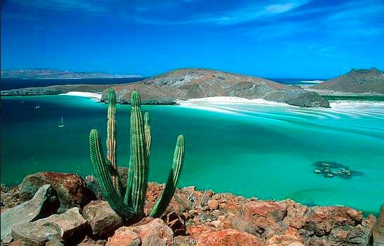 Laz Paz, captial of Baja California. Az81964444. Public Domain