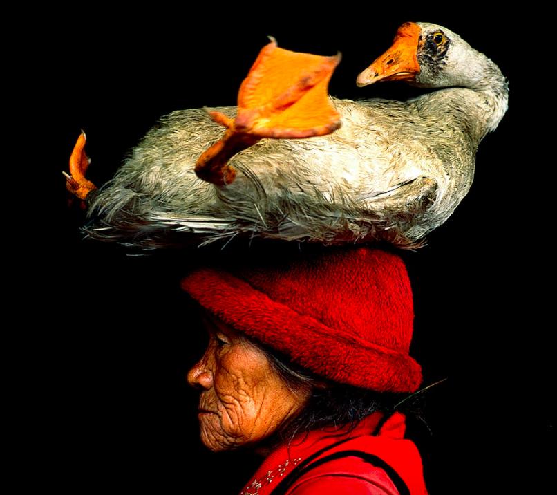 Images / Words © Cristina Mittermeier / Words © Kim Frank