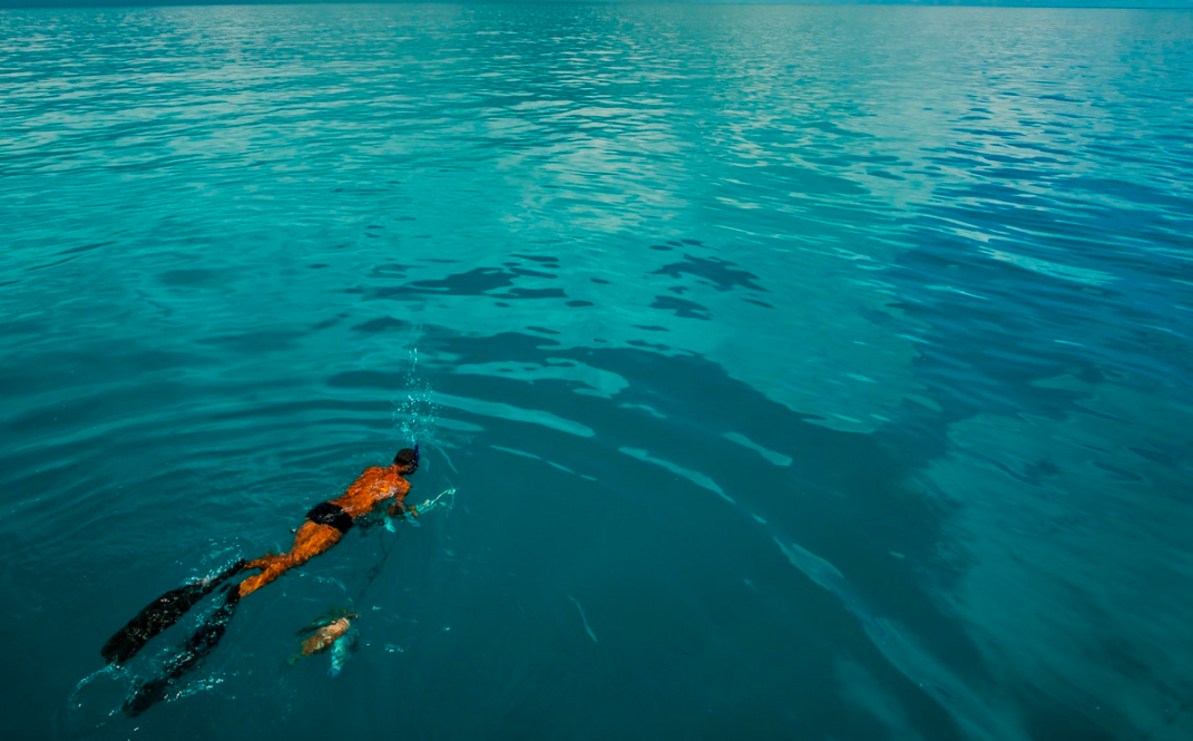 Zah, an artisanal fisherman, harpoons fish in the Abrolhos Reef to feed his family. Because they live in a Marine Protected Extractive Area, fishermen like Zah are committed to complying with fishing regulations and no-take zones, which benefit their local ecosystem.    Brazil