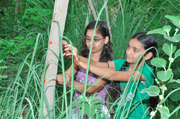 Girls connecting with the trees in Piplantri. Photo provided by Piplantri Village.