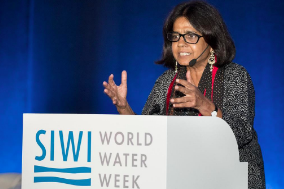 Dr. Sunita Nahrain presenting at the Stockholm Water Prize Symposium.  Stockholm International Water Institute . CC 2.0