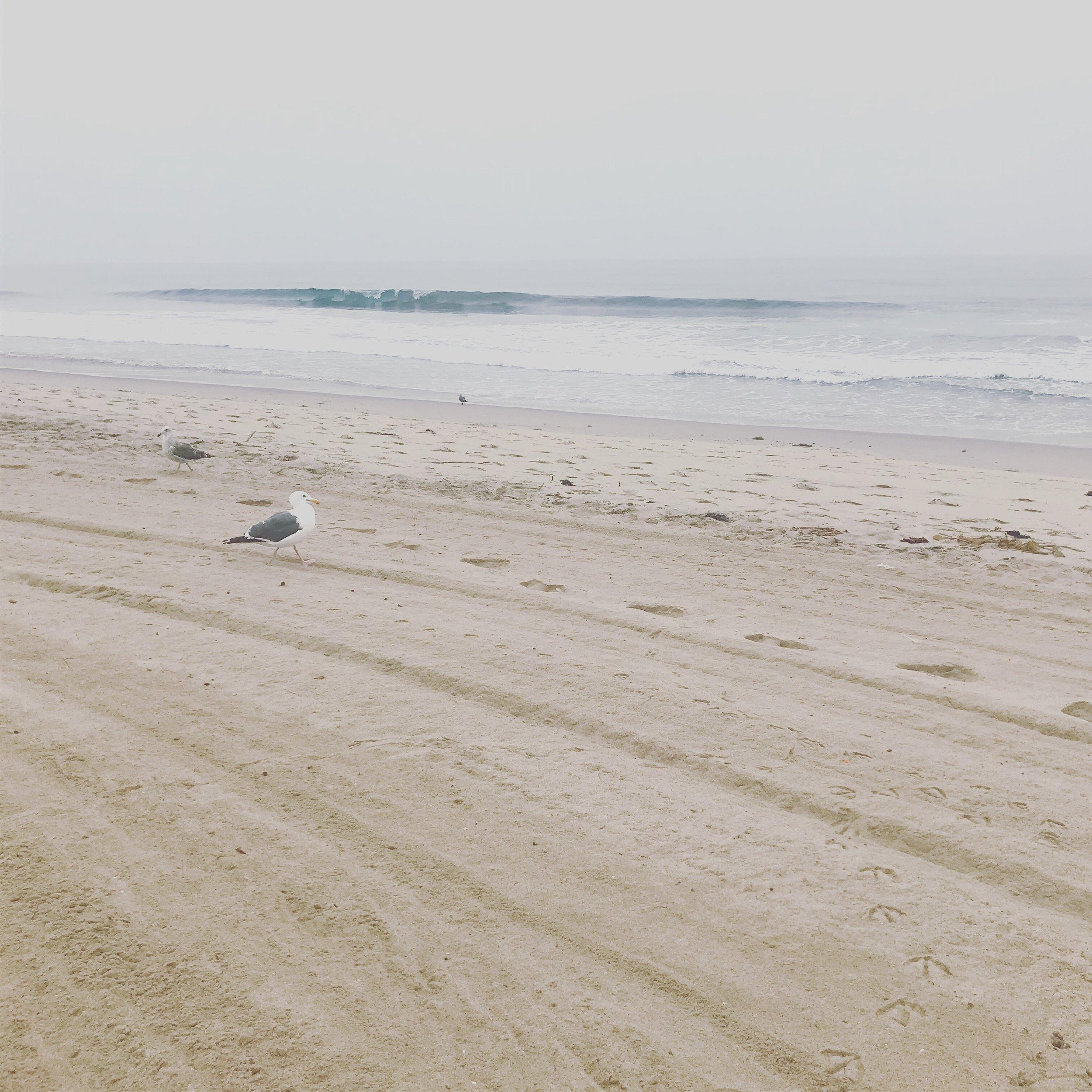 Beach House Yoga