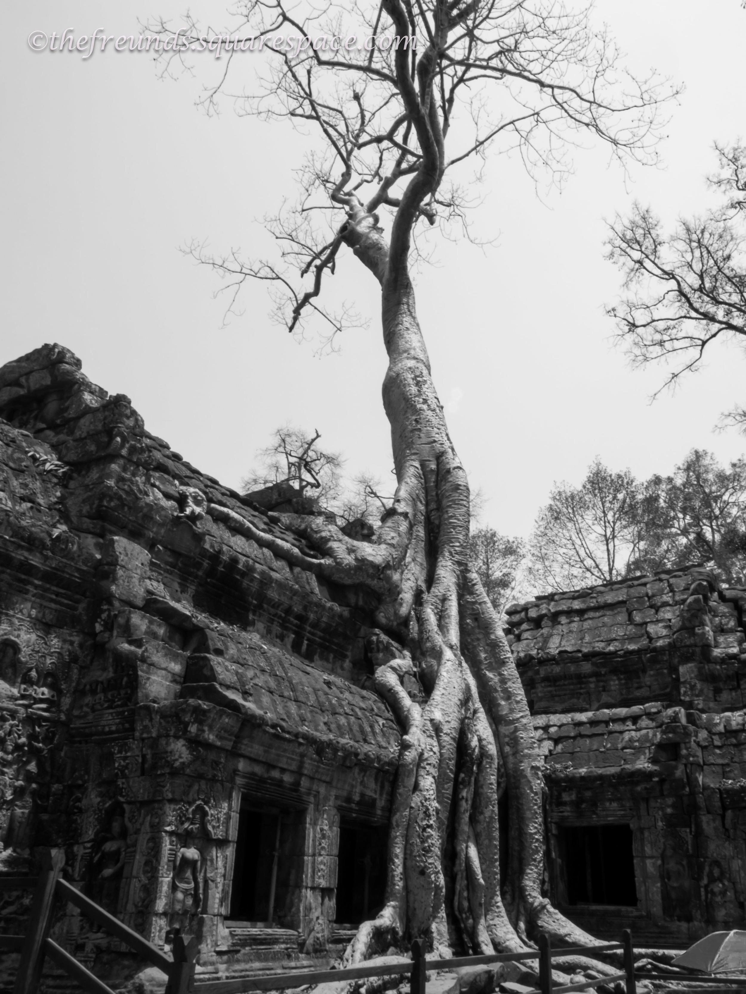 Angkor_SiemReap-31.jpg